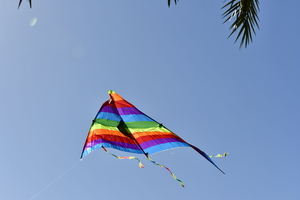 colourful Kite i flight: One triangular colourful kite is flying over trees and in the background is the city.