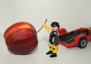 apple playmobil transporter: our children's funny playing with playmobil and apples