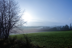 foggy winter landscape 2