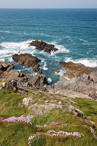 Coastline: Coastline of Towan Head, Cornwall, England.