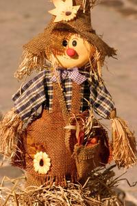 toy scarecrow 2
