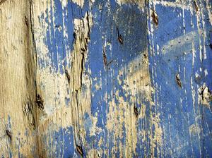 blue#2