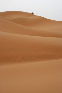 Tengger desert: Sand dunes of the Tengger desert, China.