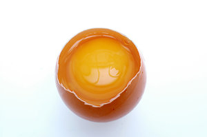 Open egg.