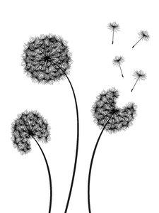3 Dandelions