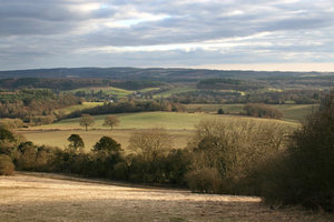February landscape: Landscape of the North Downs, Surrey, England, in February.