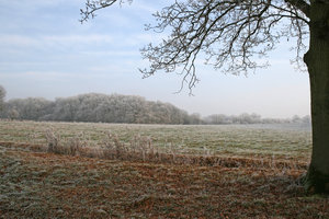 Frosty landscape: Rural landscape after a heavy overnight frost in West Sussex, England.