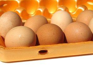 farm eggs 2