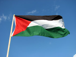 The Palestinian flag  1