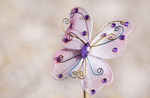 Butterfly: toy butterfly