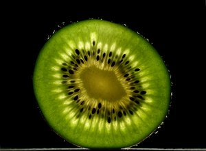 Kiwi in backlight