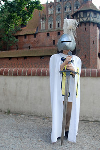 Young teutonic order's knight