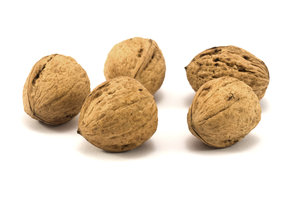 Walnuts 5: Common walnuts