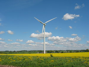 wind mills and yellow field 2