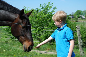 Boy and Horse 1