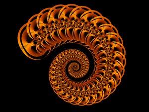 Spiral shell 2