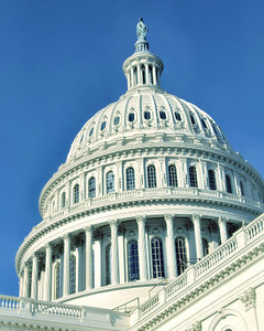 U.S. Capitol Building: U.S. Capitol Building in Washington, DC, USA
