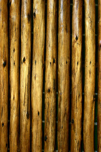 wood: No description