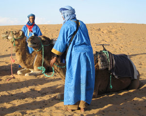 Camels and the Sahara