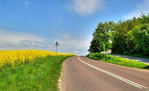 Rape and road - HDR
