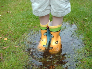 Wellies 1: Picture of children's Wellington boots