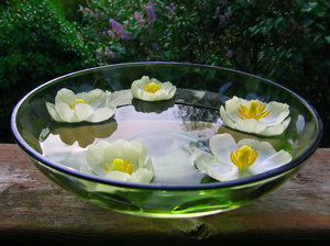 Flower Bowl