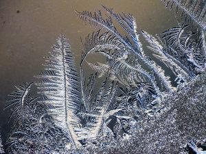Ice sculptures 1