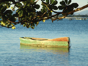 > Boat in Island: Barco visto do Beco no Ribeirão da Ilha em Florianópolis, Santa Catarina, BrasilSight of the boat in the alley in the Ribeirão da Ilha in Florianópolis, Santa Catarina, Brazil