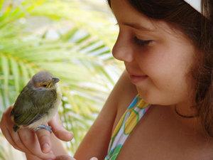 > Bird_Girl 2