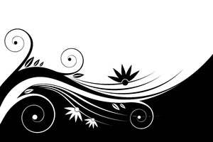 Black & White Floral: Black and white floral background