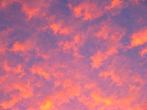 Sky Fire 1: Spectacular fiery colours in oddly shaped clouds at sunset.