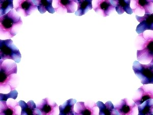 Floral Border 9: Floral border on blank page. Lots of copyspace.