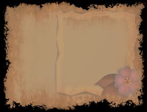 Grunge Plus One: A little addition to a grunge background. Floral insert and frame.