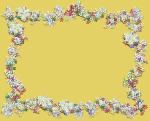 Scribbly Border 3: Scribble flowers and shapes in a border. Would make a nice invitation, banner, card, note or background etc. Remember to read RGB's terms of use before using  images. No redistribution is allowed.