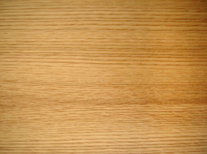 Young oak: Polished young oak texture