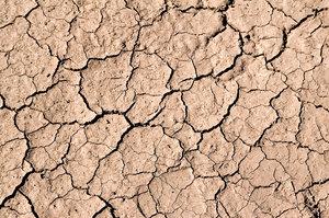 Really Dry Mud