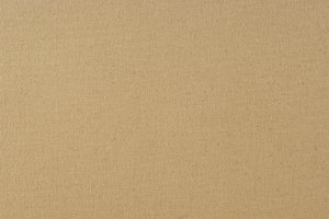 Tan Canvas Texture