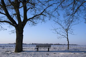 Winter: Winter landscape