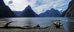 Milford Sound 3: Milford Sound at low tide. December 31, 2006.