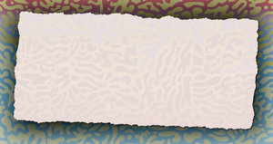 Torn Thin Paper 3: Torn Thin Paper with patterned background.Please visit my stockxpert gallery:http://www.stockxpert.com ..