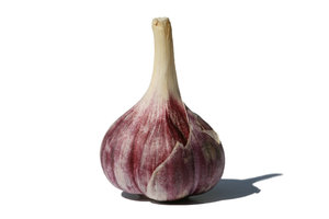 Fresh Garlic 2