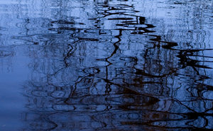 Pattern_2: Reflecting in wateredge