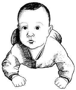 James: Hand drawn illustration of Sweet Baby James.Please visit my stockxpert gallery:http://www.stockxpert.com ..