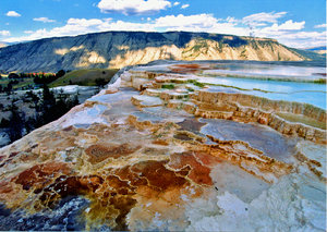 Montana 3: geyser in yellowstone national park, Montana