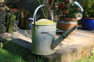 Watering Can: Rustic watering can found in garden of new home.