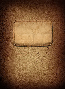 Leather Cover 2