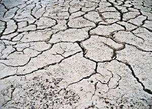 dryness texture