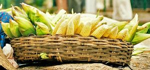 Corn basket