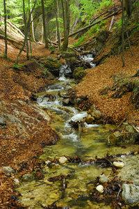 Autumn in Small-Fatra