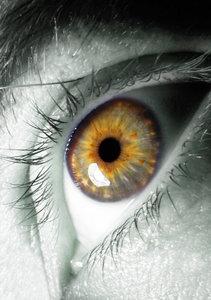 Eye max x